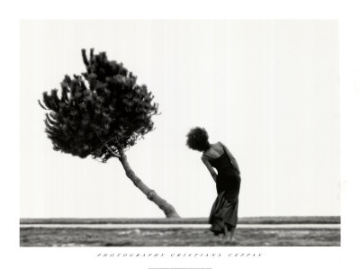 8142~The-Tree-Posters